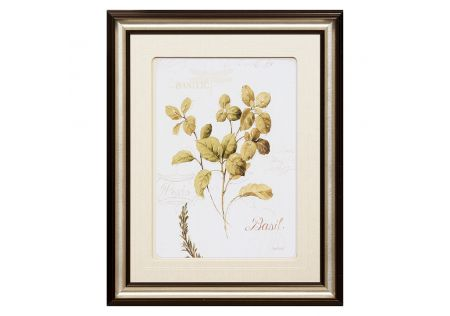 Wholesome Herbs Framed Print C