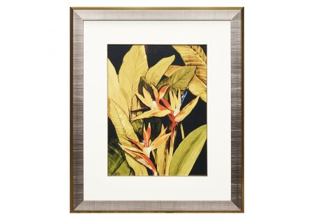 In the Tropics Framed Print B