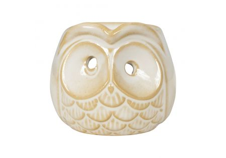Mr Know-It-Owl Oil Burner
