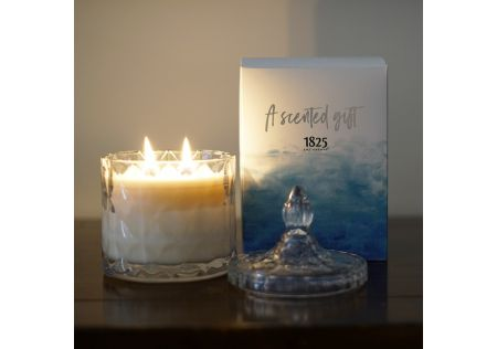 Coconut + Lime Candle with Box